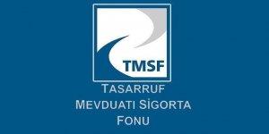 TMSF Cumhurbaşkanlığı ilgili kurumu oldu