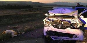 Koyun sürüsüne otomobil çarptı