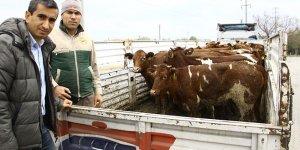 13 genç çiftçinin projesi kabul edildi