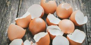 Yumurta kabuğunu önce kaynatın! Sonra da...