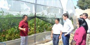 Büyükorhan'da seracılık alternatif olacak