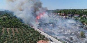 Mudanya'daki orman yangınına soruşturma başlatıldı