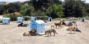 Mudanya Belediyesi'ne sağlıklı çevre ödülü