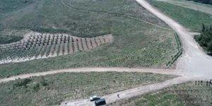 'Yanan ormanlar devlet güvencesinde'
