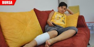 Sokak köpeği, Ahmet Can'ı hastanelik etti