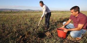 Çiftçiye toprak  analizi çağrısı
