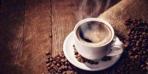 Dünyanın en pahalı kahveleri bu hayvanların bağırsaklarından geçiyor!