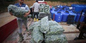 'Turşucu Köy' ihracatta hedef büyüttü