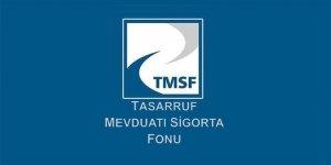 TMSF'deki şirketlerin büyüklüğü 61 milyar TL