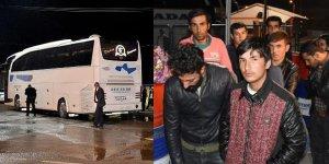 Bursa'ya gelen otobüste yakalandılar