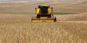 Buğdayda beklenti 20 milyon ton
