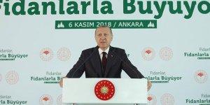 Erdoğan: Tabiata bakış açımızı düzeltmezsek dünya yaşanılır olmaz
