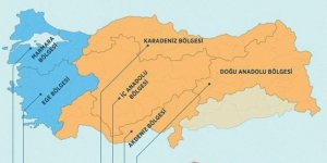 Türkiye'nin 'besin alerjisi haritası' çıkarıldı