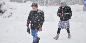 Eğitime 'kar' engeli! Bir gün tatil edildi