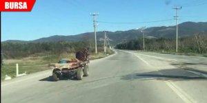 Ters yönde giden at arabası paniği