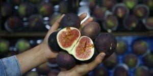 Bursa Valiliğinden 'siyah incir' genelgesi