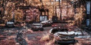 33 yıl sonra Çernobil'de ilginç keşif