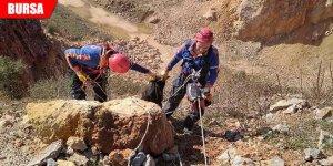 Yamaçtan yuvarlanan keçiyi AFAD kurtardı