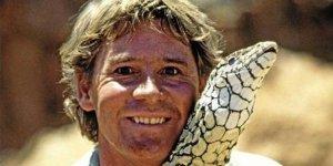 Steve Irwin'in korkusuz yaşamı Google ana sayfasına taşındı