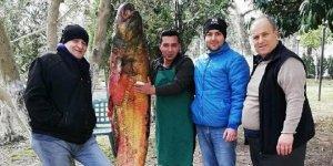 İznik Gölü'nde 105 kiloluk yayın balığı yakalandı