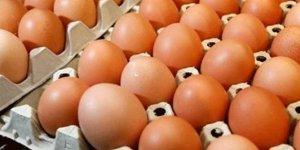 Yumurta için ezber bozan araştırma!