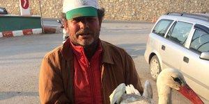 Yaralı leyleğe çiftçi şefkati