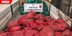 Jandarma'dan baskın: 9 ton ele geçirildi, 14 gözaltı