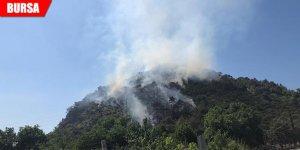Uludağ eteklerinde orman yangını