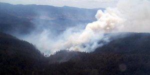 Orhaneli'ndeki yangının nedeni belli oldu