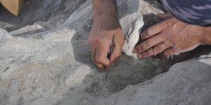Yeniyaylacık'ta fosiller gün yüzüne çıkarılıyor