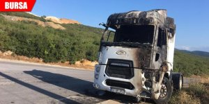 Park halindeki TIR alev alev yandı