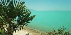 İznik Gölü turkuaza büründü