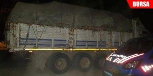 Jandarma 20 ton kaçak tomruk ele geçirdi
