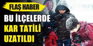 Bursa'nın bu ilçelerinde kar tatili uzatıldı!