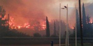 Yunanistan'da orman yangını: 1 kişi hayatını kaybetti
