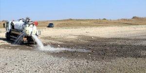 Balıkların öldüğü gölete 170 ton su