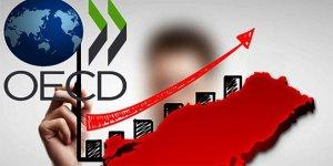 OECD Türkiye tahminini yukarı yünlü revize etti