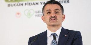 Bakan Pakdemirli: 166 milyon TL hibeli 133 proje onaylandı