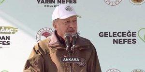 Erdoğan: Hedefimiz zümrüt yeşili bir Türkiye fotoğrafı