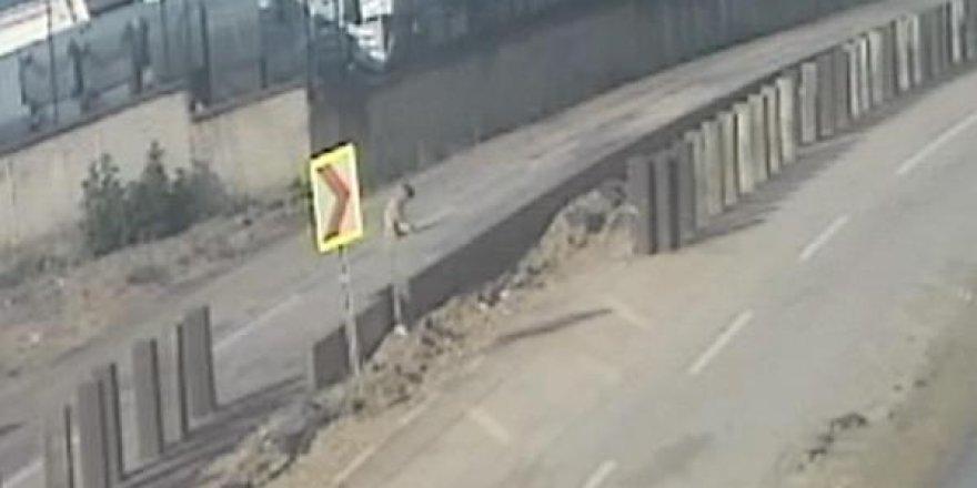 Vicdansız sürücü köpeği ezdi, ardına bakmadan kaçtı