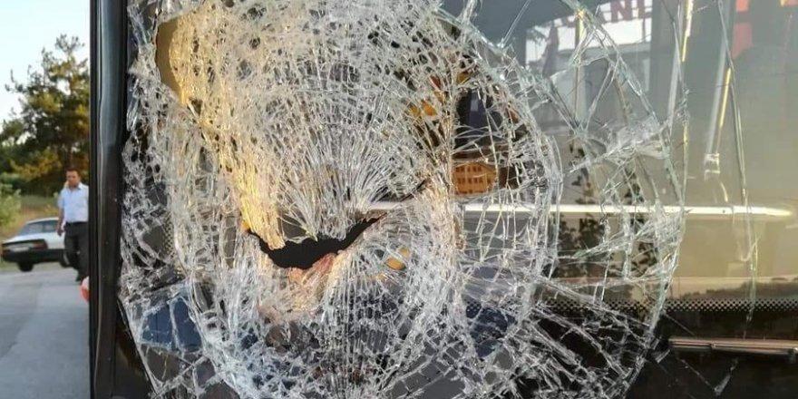 Ters şeritte giden halk otobüsü profesyonel bisikletçiye çarptı