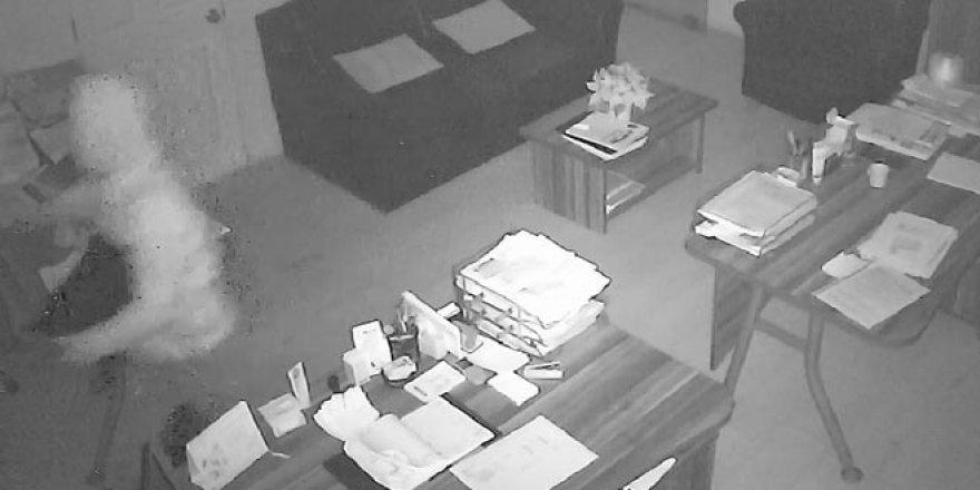 Kameralardan tespit edildi! Okullara da girmiş