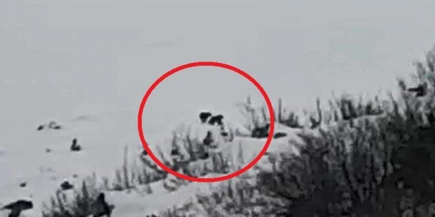 Uludağ'da kış uykusuna yatmayan ayılar görüntüledi