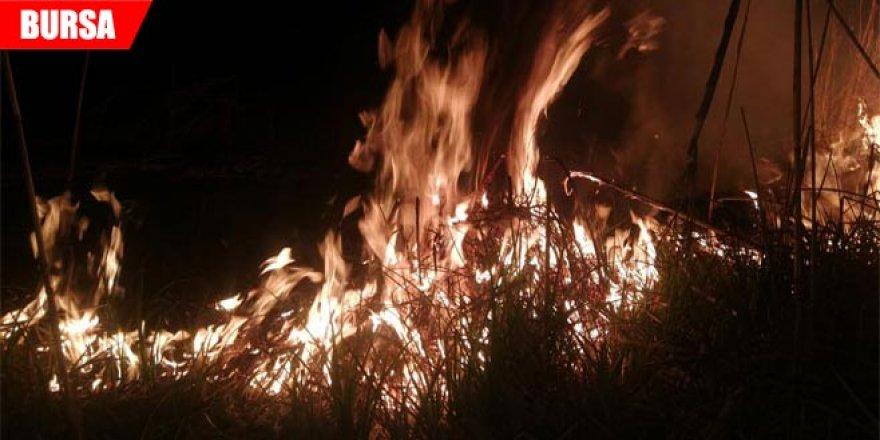 Korku dolu anlar! Sazlık alanda yangın