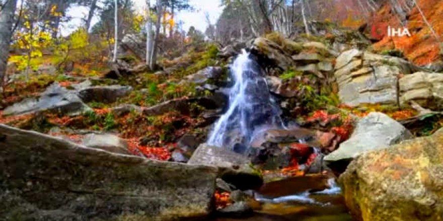Uludağ'ın eteklerinde sonbahar bir başka güzel