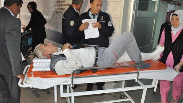 Ilçesinde, kestiği ağacın altında kalan yaşlı adam yaralandı