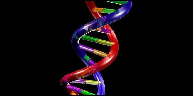 Nobel ödüllü genetik bilimci Smithies öldü