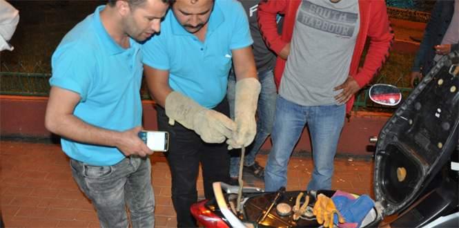 Motosiklette yılan operasyonu