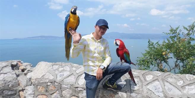 Bursa'da para kazandıran papağanlar