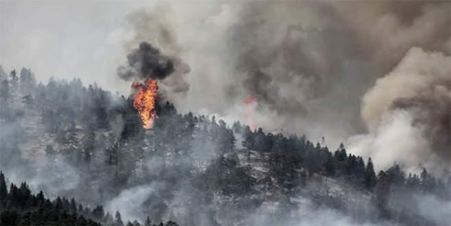 Bilecik'e sıçrayan orman yangını ilerlemeye başladı